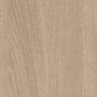 Дуб Орлеанский песочный (H1377 ST36)