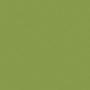 Зелёный киви (U626 ST9)