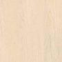 Канадский клён кремовый (H1867 ST9)