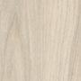 Капский вяз белый (H3760 ST10)