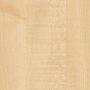 Клён медовый (H1521 ST3)