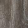Сосна Пасадена (Сосна Джексон) (H1486 ST36)